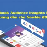 Facebook Audience Insights Là Gì? Hướng dẫn cho Newbie 2020